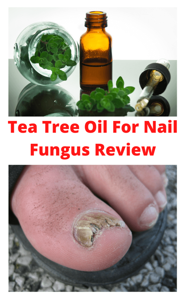 Tea-Tree-Oil-For-Nail-Fungus-Review